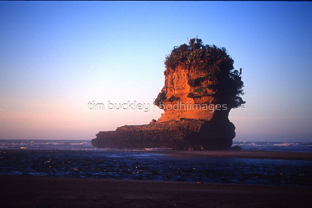 shag rock. punakaiki, westcoast by tim buckley | bodhiimages