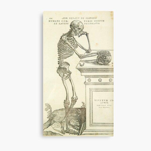 Vintage Anatomy Andreas Vesalius Skeleton Metal Print