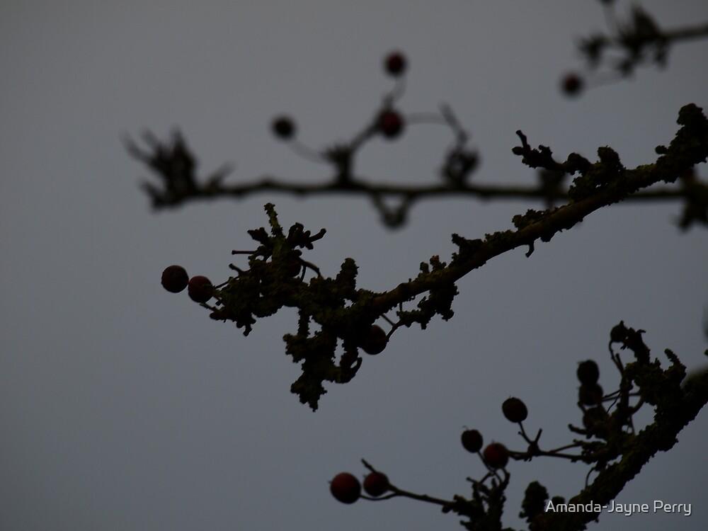 Dark Branch II by Amanda-Jayne Perry