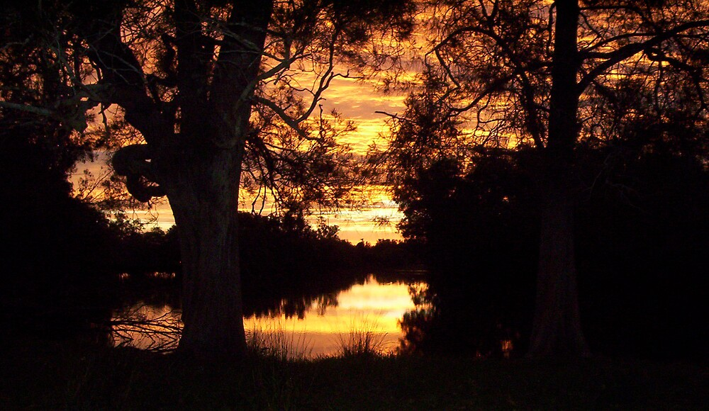 Sunset by Bluenaite