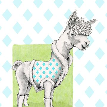 Alpaca Illustration by mrana