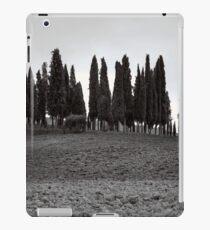 Tuscany iPad Case/Skin