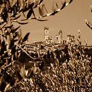 San Gimignano by Nigel Fletcher-Jones