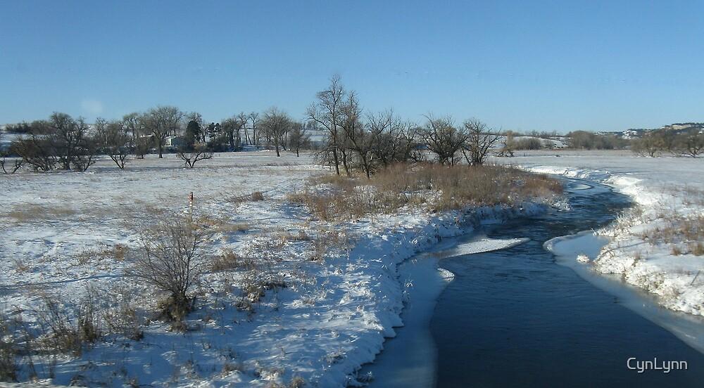 Some Where in South Dakota by CynLynn