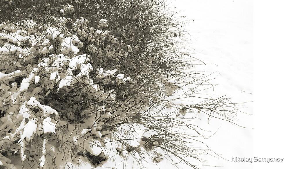 hair of winter by Nikolay Semyonov