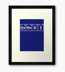 Genesis Elements Spelling Framed Print