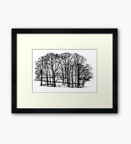 Winter trees in snow in black and white Framed Print