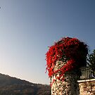 a corner of the Isle of San Giulio by sstarlightss