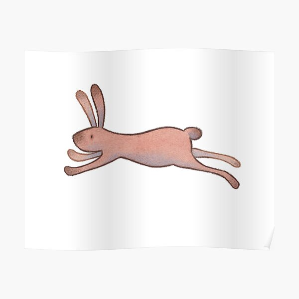 The Flying Rabbit Poster
