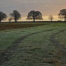 Winter Scene, near Droxford, Hampshire by RedHillDigital