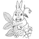 Bunny and strawberry by huguette-v