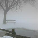 Fence in a Fog by Larry Llewellyn