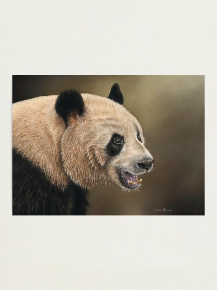 Alternate view of Giant Panda Photographic Print
