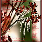 Love Touches... Ice  by Amber Elizabeth Fromm Donais