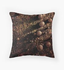 Geology Throw Pillow