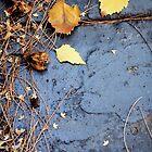 Fairy Dust by Karen E Camilleri