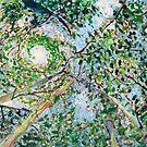 View from the Hammock by Scott Clendaniel