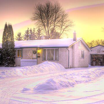 Winnipeg in December by eadnams