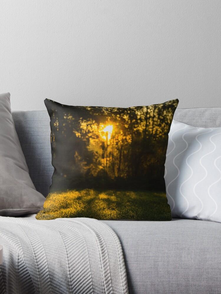 RANDOM PROJECT 6 [Throw pillows] by Matti Ollikainen