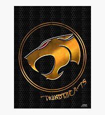 comic thundercats Photographic Print