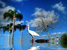 Little Island  by LudaNayvelt