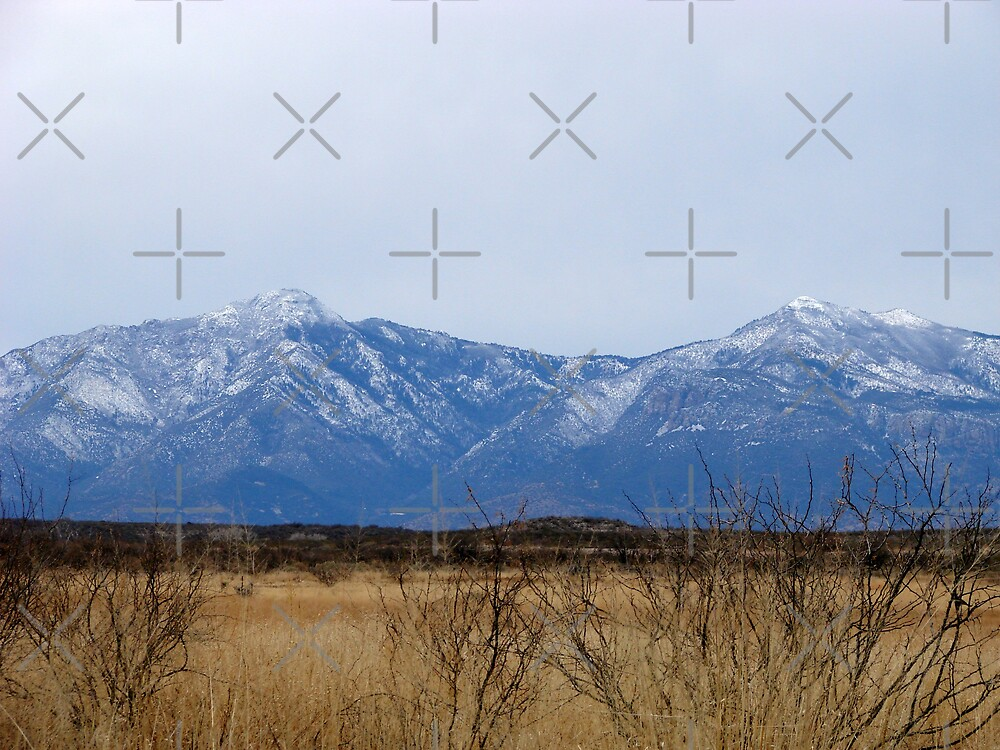 Snow Capped Arizona Mountains by Kimberly Miller