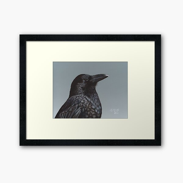Study of a Raven Framed Art Print