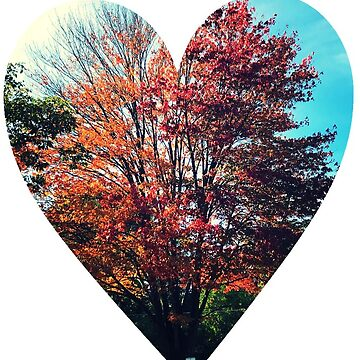 Autumn Tree in Heart by jr4599