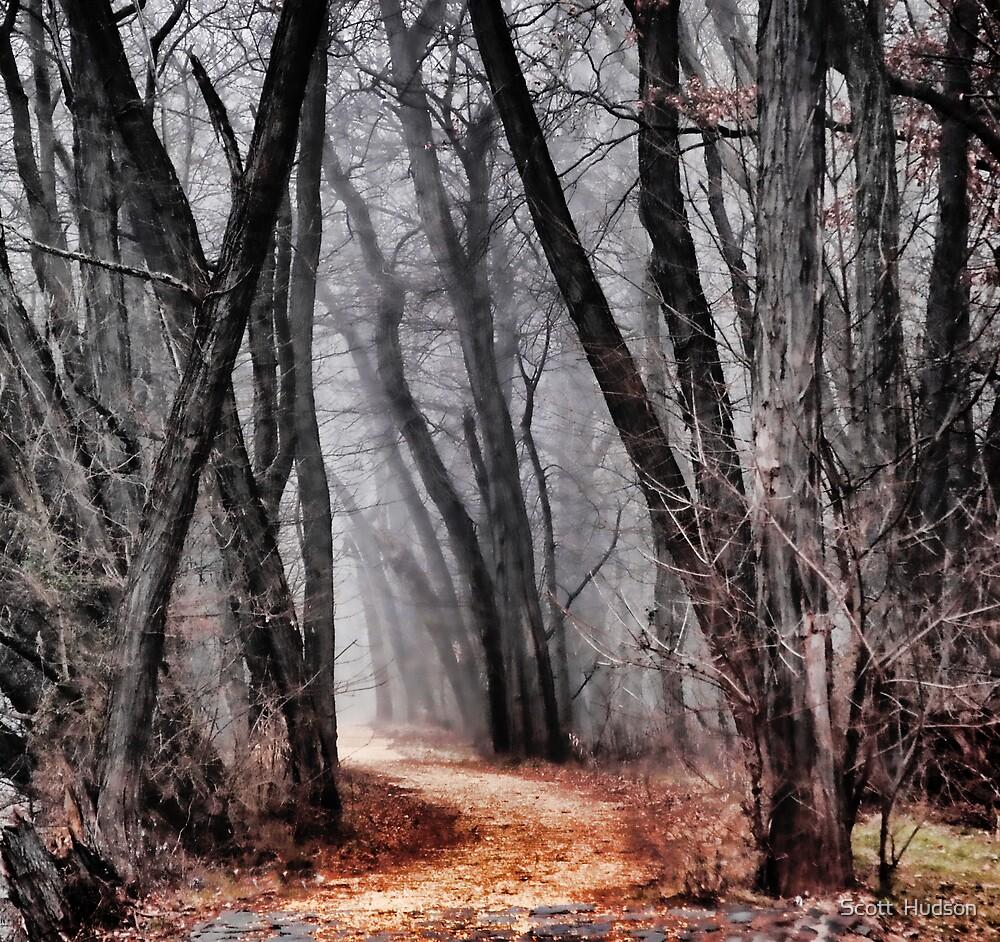 Dark Trails by Scott  Hudson