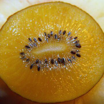 Kiwi Fruit by SaharaLily