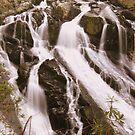 Swallow Falls, North Wales by Kimberley Davitt