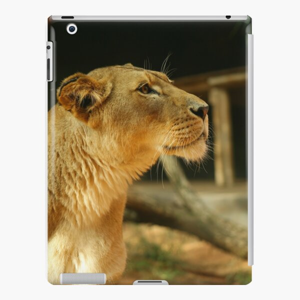 Lioness iPad Snap Case