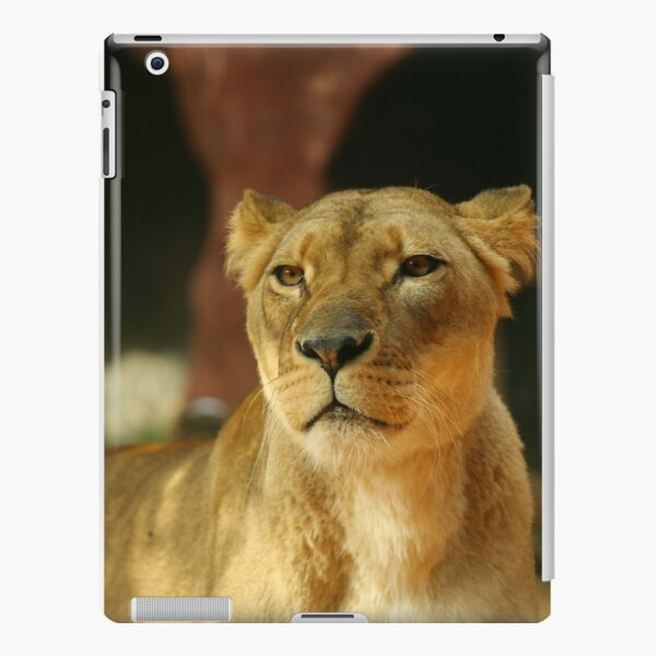 Lioness 2 iPad Snap Case