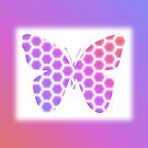 Peach Pink Purple Butterfly in Hexagonal Pattern by Shelley Neff