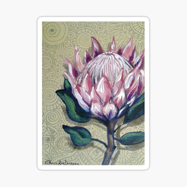 King Protea Sticker