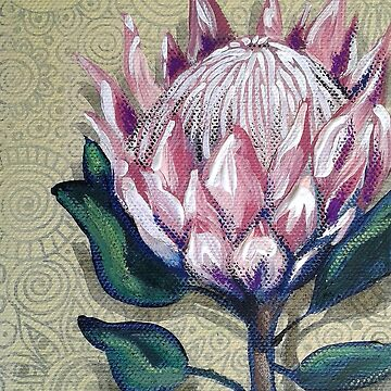 King Protea by cheriedirksen