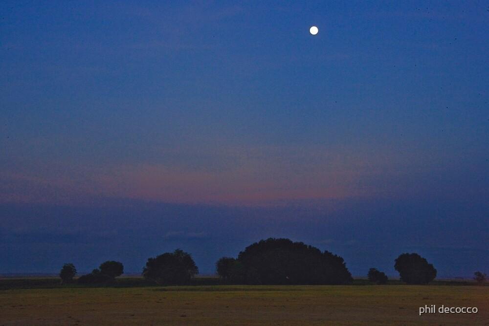 Serengeti Moon by phil decocco