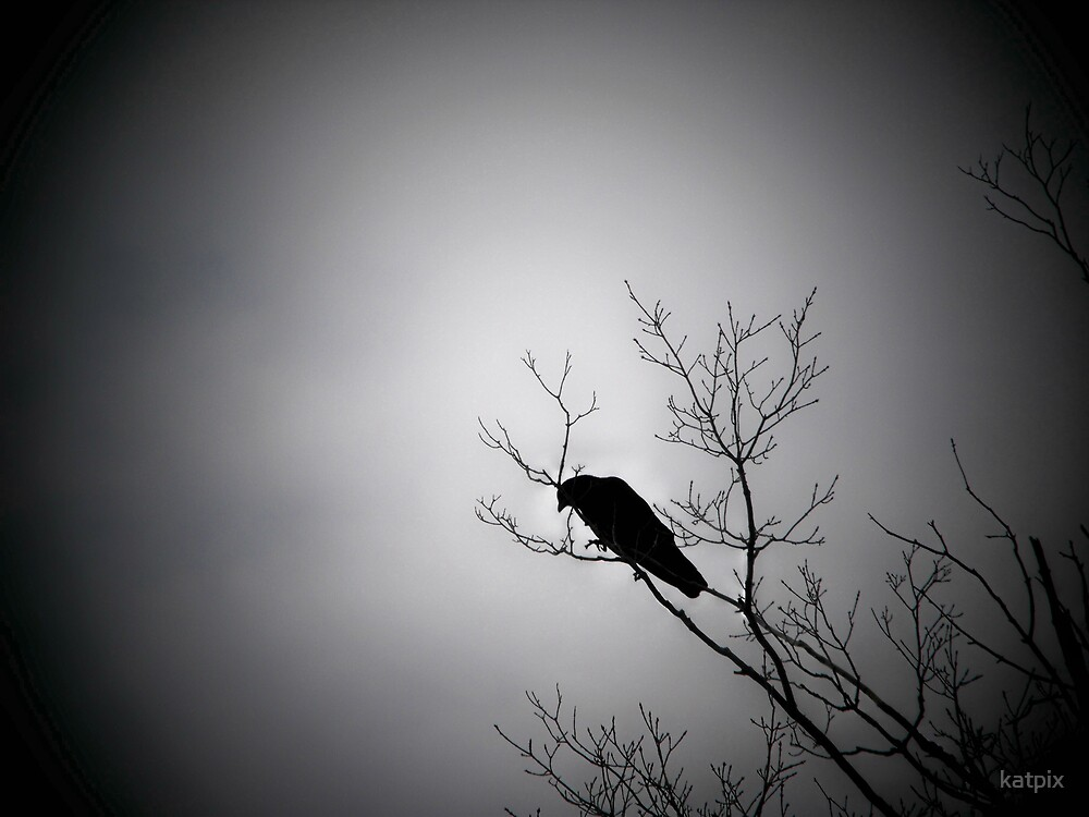 The Crow by katpix