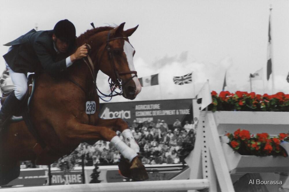 Jumper by Al Bourassa