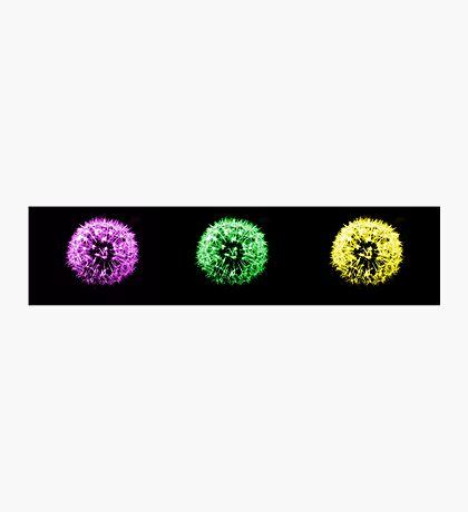 3 colours Photographic Print