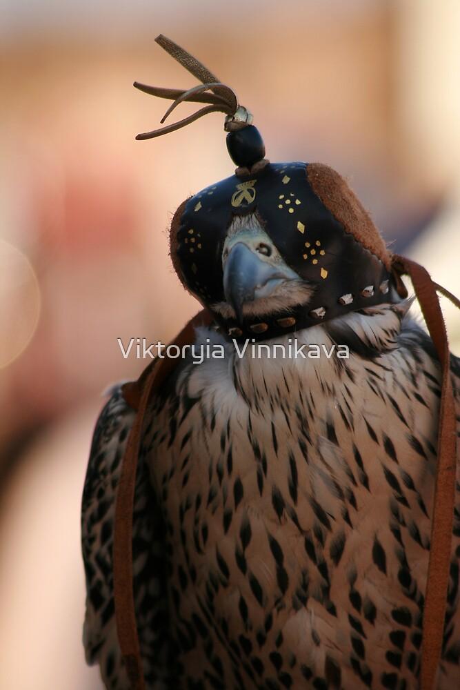 Beautiful Falcon by Viktoryia Vinnikava