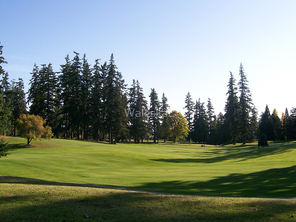 Golf Course on Bainbridge Island by WaleskaL
