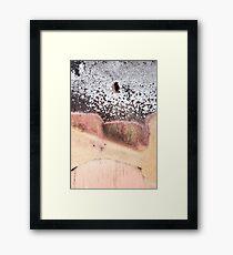 Burnt Tree Texture Framed Print