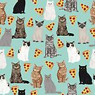Cats pizza slices food cat lover pet gifts must have cat breeds  by PetFriendly