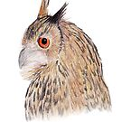 Horned Owl by Linda Ursin