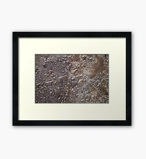 Water Droplet Glass Framed Print