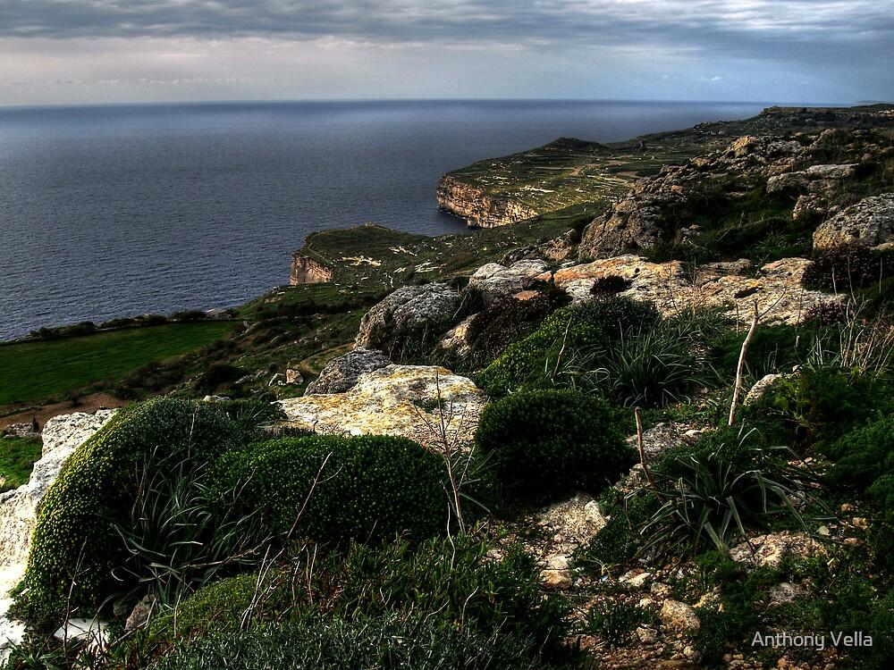 Dingli Cliffs by Anthony Vella