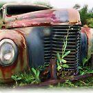 Old International Truck by ezcat