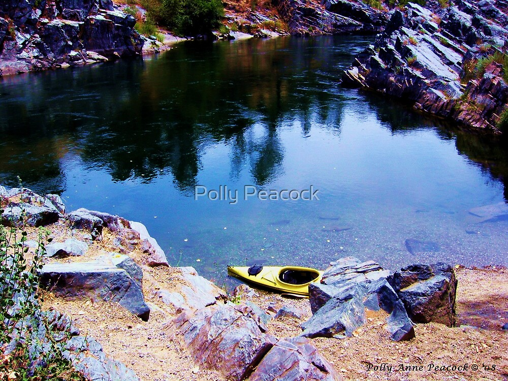 Kayaking the American River in Folsom, California by Polly Peacock