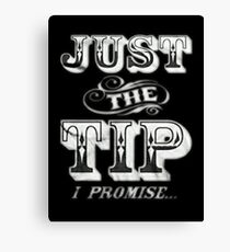 Just The Tip Canvas Print